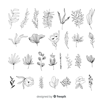 Ręcznie rysować elementy dekoracji kwiatowych