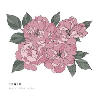 Ręcznie rysować różowe kwiaty róży wektor ilustracja