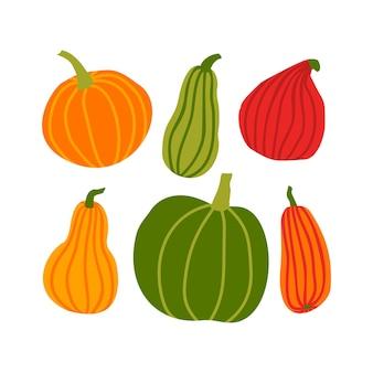 Ręcznie rysować zestaw dyni w prostym stylu doodle. ilustracji wektorowych kolorowe dynie o różnych kształtach i rozmiarach na białym tle. szablon na halloween, święto dziękczynienia, żniwa