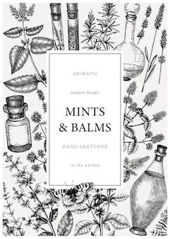 Ręcznie rysowana karta składników perfum i kosmetyków. ozdobny rocznika mięty i balsamy zioła.