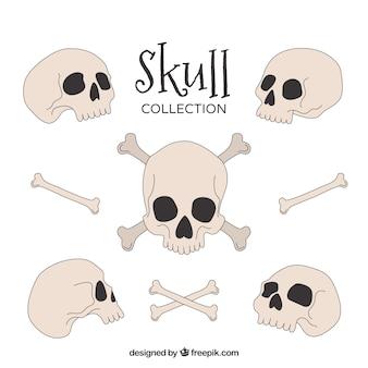 Ręcznie rysowana kolekcja czaszek i kości