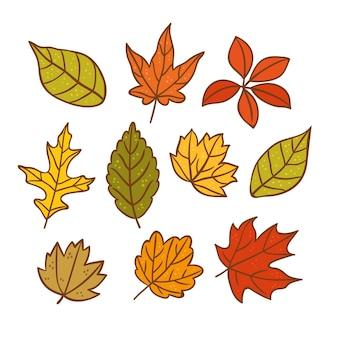 Ręcznie rysowana kolekcja jesiennych liści