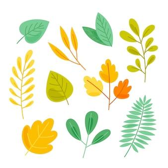 Ręcznie rysowana kolekcja kolorowych liści