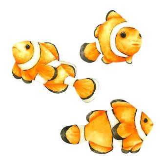 Ręcznie rysowana kolekcja nemo fish w akwareli