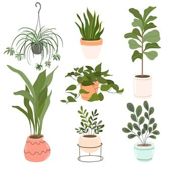 Ręcznie rysowana kolekcja roślin doniczkowych