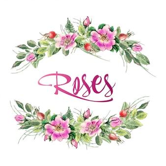 Ręcznie rysowane akwarela malarstwo róży na białym tle.