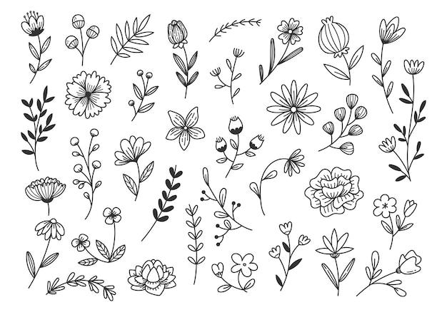 Ręcznie rysowane doodle kwiatów i gałęzi