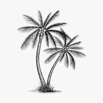 Ręcznie rysowane drzewa kokosowego wektor
