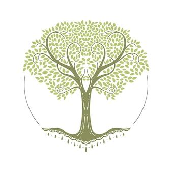 Ręcznie rysowane drzewa życia z pięknymi gałęziami