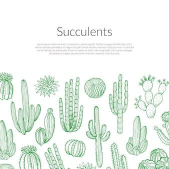 Ręcznie rysowane dzikie kaktusy rośliny ilustracji