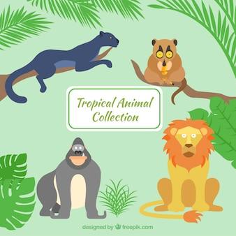 Ręcznie rysowane dzikie zwierzęta w dżungli