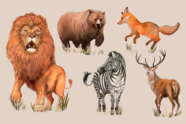 Ręcznie rysowane dzikie zwierzęta