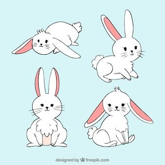 Ręcznie rysowane easter bunny collection