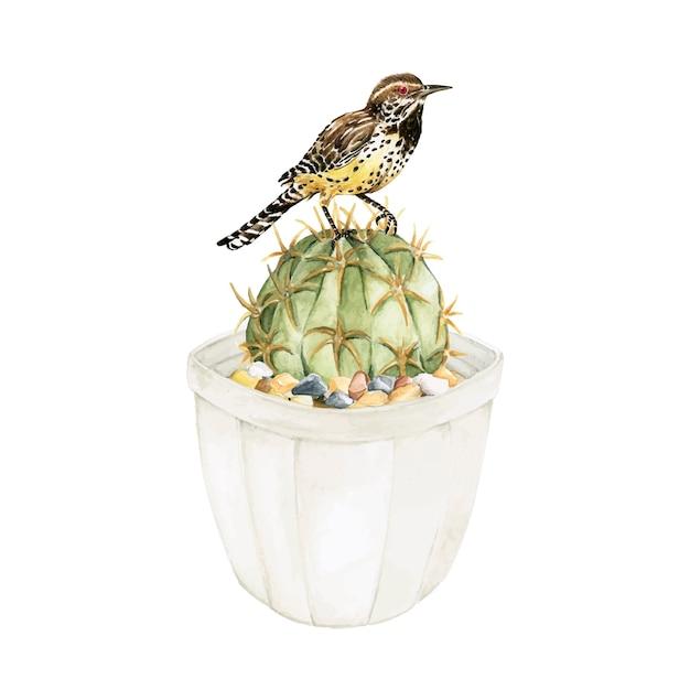 Ręcznie rysowane echinopsis calochlora kaktus i ptak