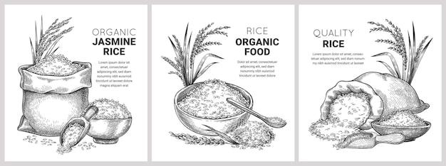 Ręcznie rysowane etykiety ryżu. retro szkic organiczne ziarna zbóż w torbie i misce. ryż dzikiego jaśminu basmati. koncepcja pakietów mąki wektor. ilustracja organiczny ryż basmati, odżywianie niegotowany baner