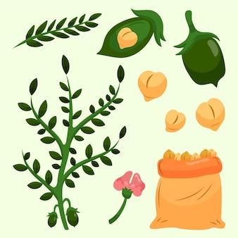 Ręcznie rysowane fasola z ciecierzycy i roślin