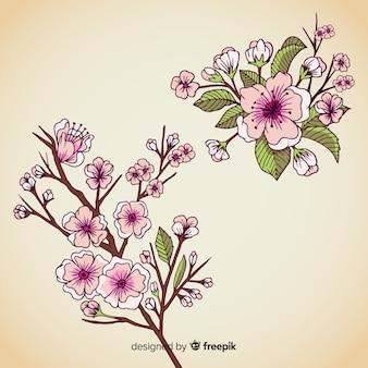 Ręcznie rysowane gałąź kwiat wiśni