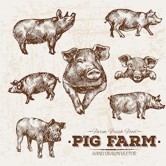 Ręcznie rysowane gospodarstwa świń