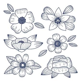 Ręcznie rysowane grawerowanie kolekcji kwiatów