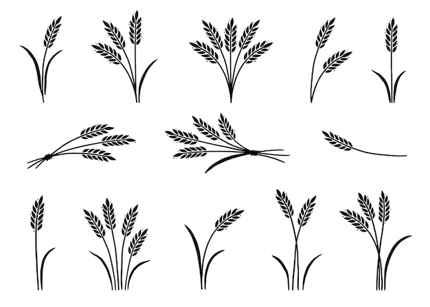 Ręcznie rysowane ikony ryżu jęczmiennego pszenicy