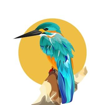 Ręcznie rysowane ilustracja gatunków ptaków egzotyczny kolor na świecie