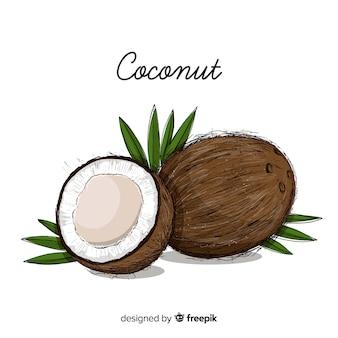 Ręcznie rysowane ilustracja kokos