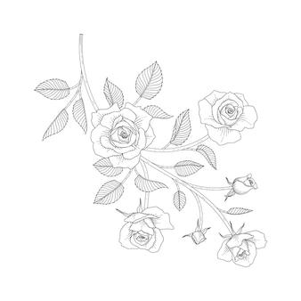 Ręcznie rysowane ilustracja kwiatowy róża z grafiką na białym tle. zaprojektuj wystrój logo, karty, zapisz datę, powitanie, zaproszenia ślubne, plakat, baner.