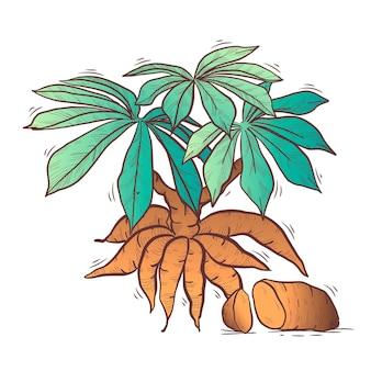 Ręcznie rysowane ilustracja tapioki