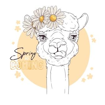 Ręcznie rysowane ilustracji. portret ślicznej alpaki z kwiatami.