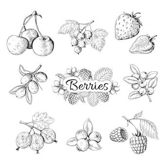 Ręcznie rysowane jagody. wiśnia borówka truskawka jeżyna vintage rysunek, rysunek szkic jagód. szablony graficzne ilustracja słodki zestaw żywności ekologicznej dzikiej przyrody