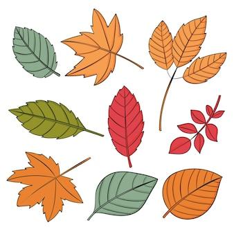 Ręcznie rysowane jesienne liście kolekcji