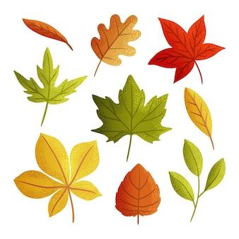 Ręcznie rysowane jesienne liście zestaw