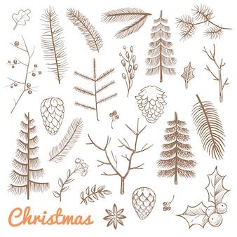 Ręcznie rysowane jodła i gałęzie sosnowe, szyszki jodły. święta bożego narodzenia i zimy doodle elementy projektu wektorowego. oddział ilustracja sosny i zimozielonych roślin
