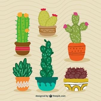 Ręcznie rysowane kaktus projektowe