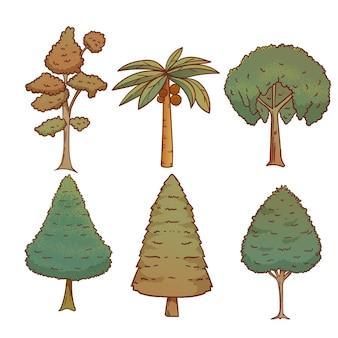 Ręcznie rysowane kolekcja egzotycznych drzew