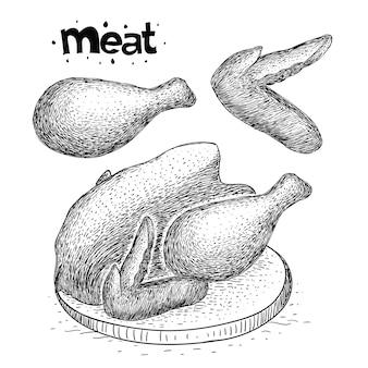 Ręcznie rysowane kolekcja mięsa z kurczaka