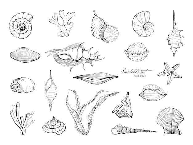 Ręcznie rysowane kolekcja muszelek. zestaw wodorostów, koralowców, rozgwiazdy, muszli. czarno-biała ilustracja.