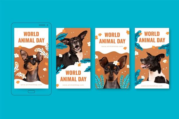 Ręcznie rysowane kolekcja opowiadań na instagramie z płaskim światem zwierząt ze zdjęciem