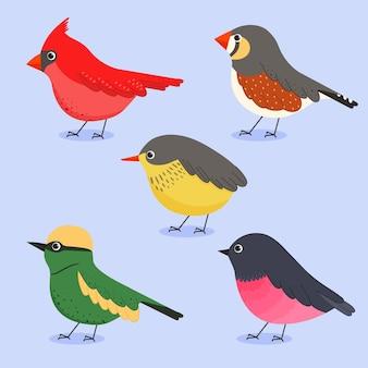 Ręcznie rysowane kolekcja ptaków projekt