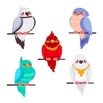 Ręcznie rysowane kolekcja ptaków w stylu