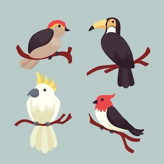 Ręcznie rysowane kolekcja ptaków