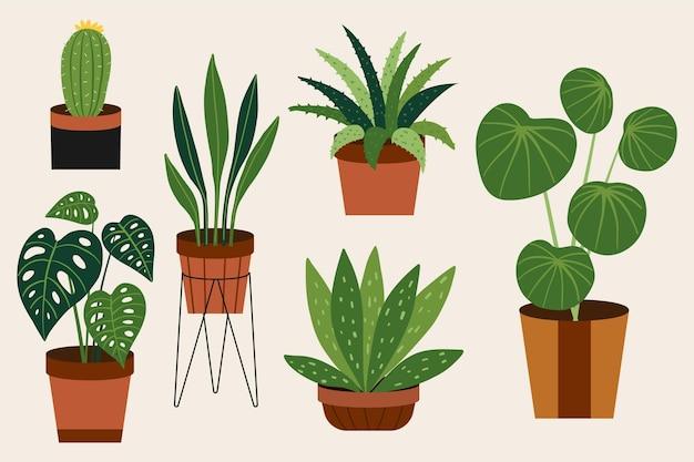Ręcznie Rysowane Kolekcja Roślin Doniczkowych Darmowych Wektorów