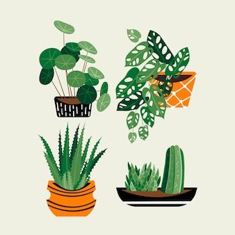 Ręcznie rysowane kolekcja roślin doniczkowych