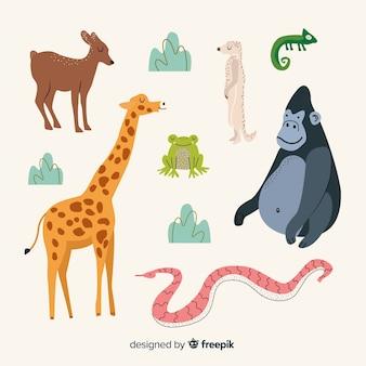 Ręcznie rysowane kolekcja zwierząt tropikalnych