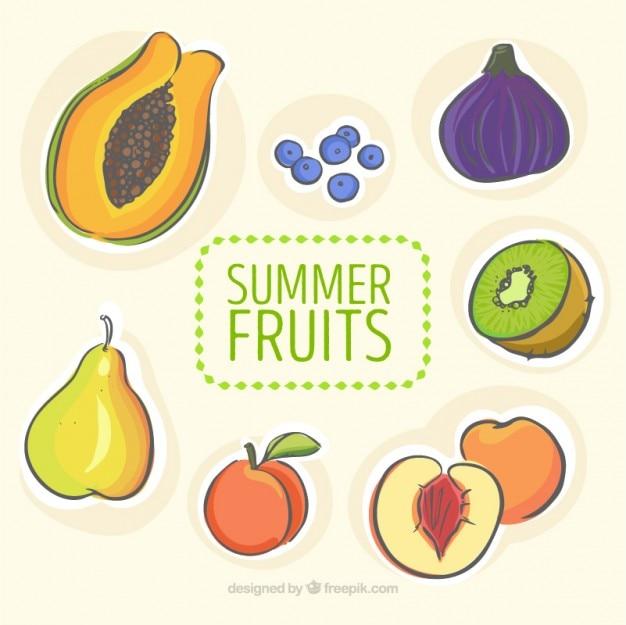 Ręcznie rysowane kolekcji letnich owoców