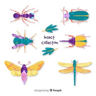Ręcznie rysowane kolekcji owadów