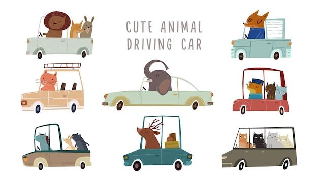 Ręcznie rysowane kolorowe słodkie zwierzęta prowadzące samochody wektor dla dzieci