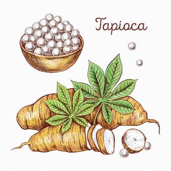 Ręcznie rysowane koncepcja tapioki