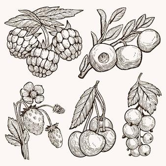 Ręcznie rysowane konspektu jagody opakowanie