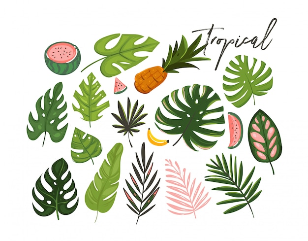 Ręcznie rysowane kreskówki letni czas grafiki ilustracje kolekcji sztuki z egzotycznych liści tropikalnej palmy i owoce arbuza, banana i ananasa na białym tle